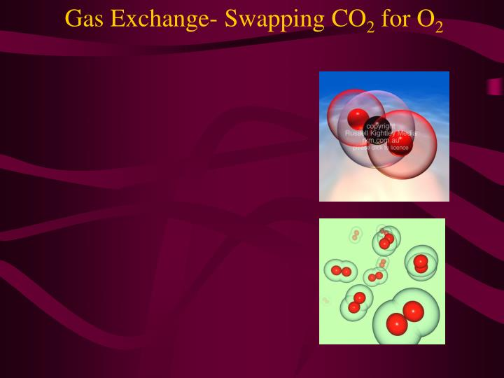 Gas exchange swapping co 2 for o 2