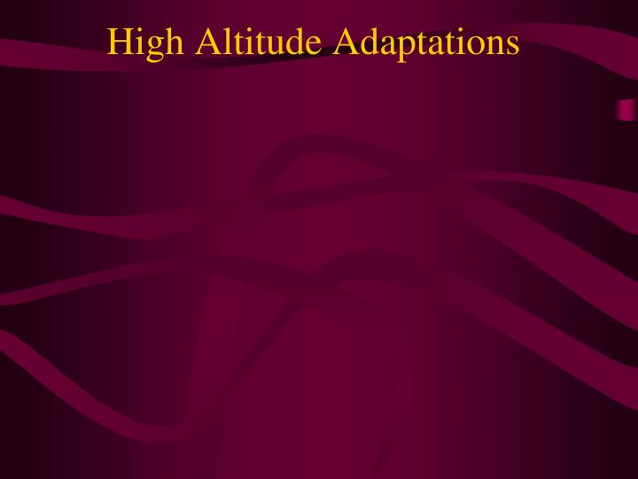 High Altitude Adaptations