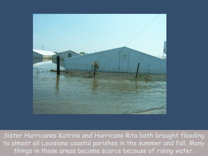 Sister Hurricanes Katrina and Hurricane Rita both brought flooding to almost all Louisiana coastal parishes in the summer and fall. Many things in those areas became scarce because of rising water.