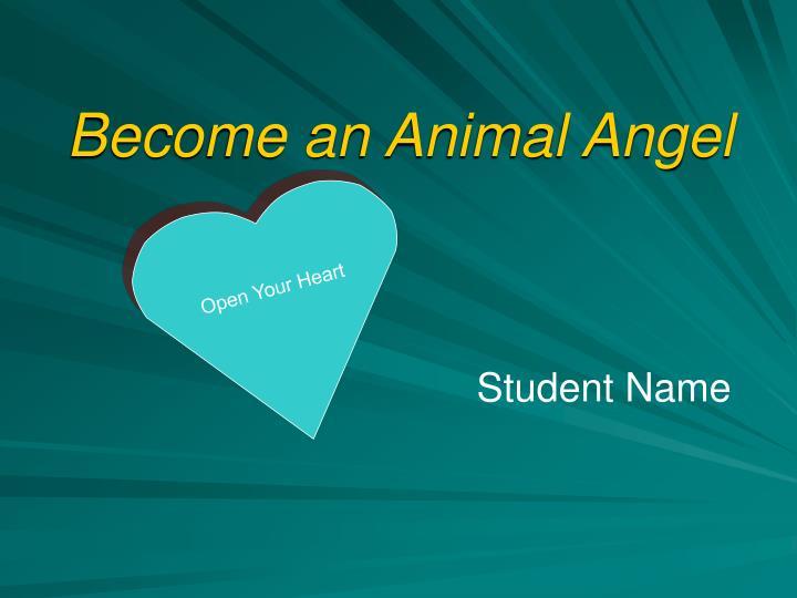 Become an Animal Angel