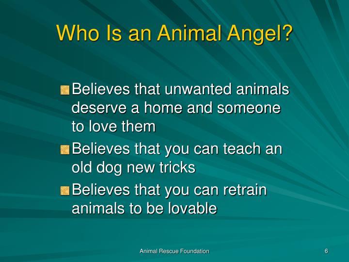 Who Is an Animal Angel?
