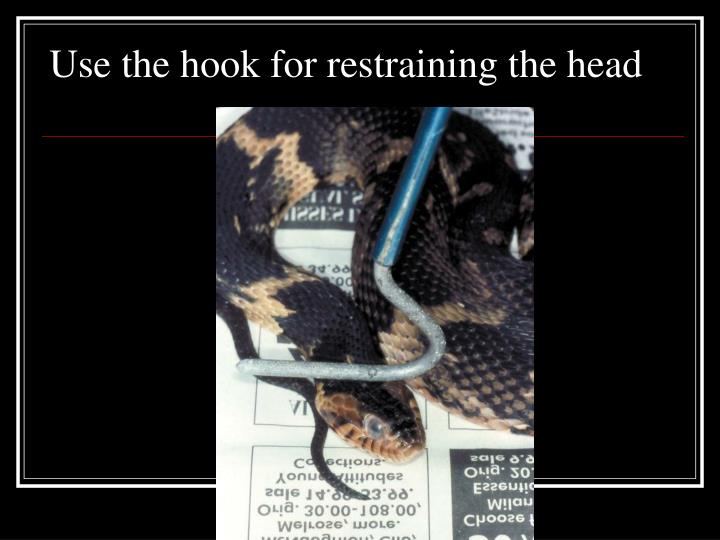 Use the hook for restraining the head