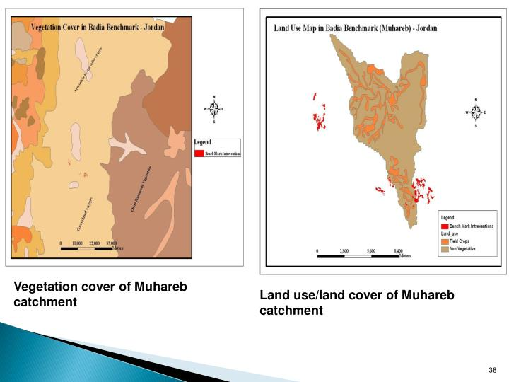 Vegetation cover of Muhareb catchment
