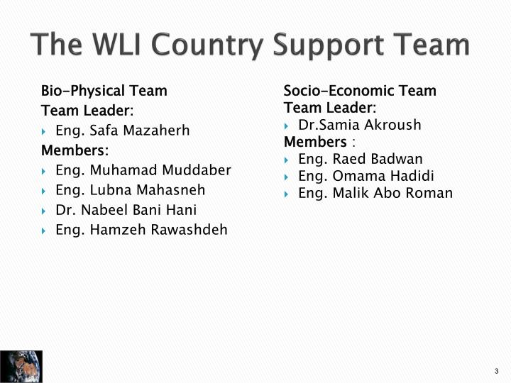 The wli country support team