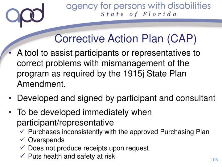 Corrective Action Plan (CAP)