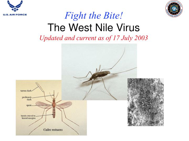 Fight the bite the west nile virus updated and current as of 17 july 2003
