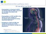 the neurotransmitter pathway story