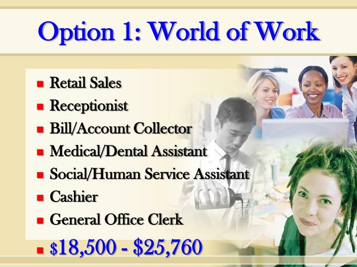 Option 1: World of Work