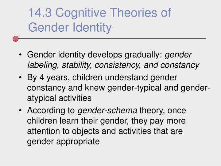 Gender identity develops gradually: