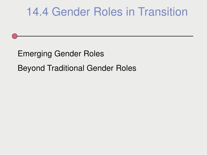 14.4 Gender Roles in Transition