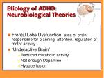 etiology of adhd neurobiological theories
