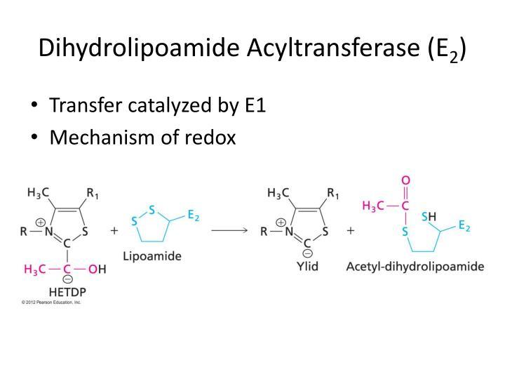 Dihydrolipoamide