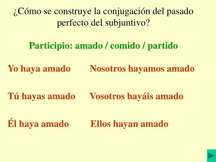 ¿Cómo se construye la conjugación del pasado perfecto del subjuntivo?