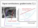 signal contributions gradient echo t 2