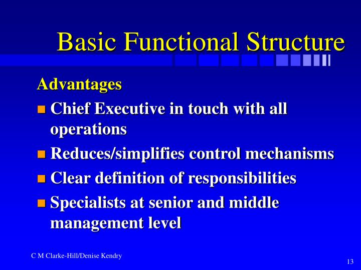 Basic Functional Structure
