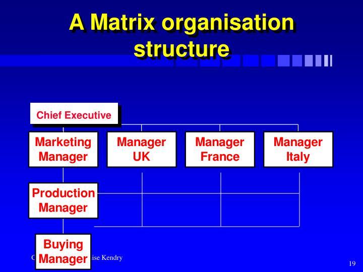 A Matrix organisation structure