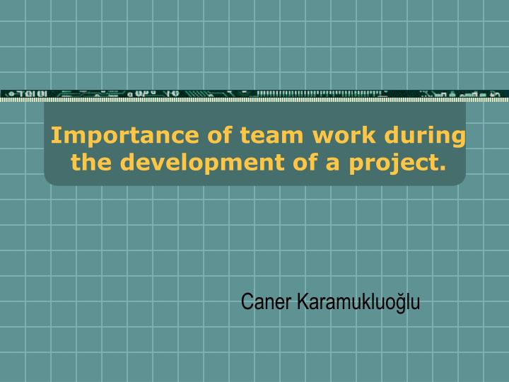 importance of team work during the development of a project n.