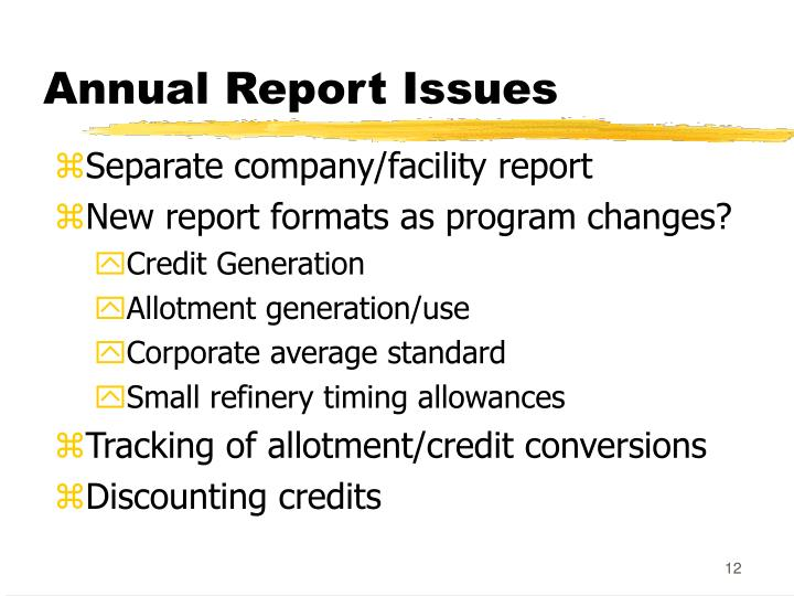 Annual Report Issues