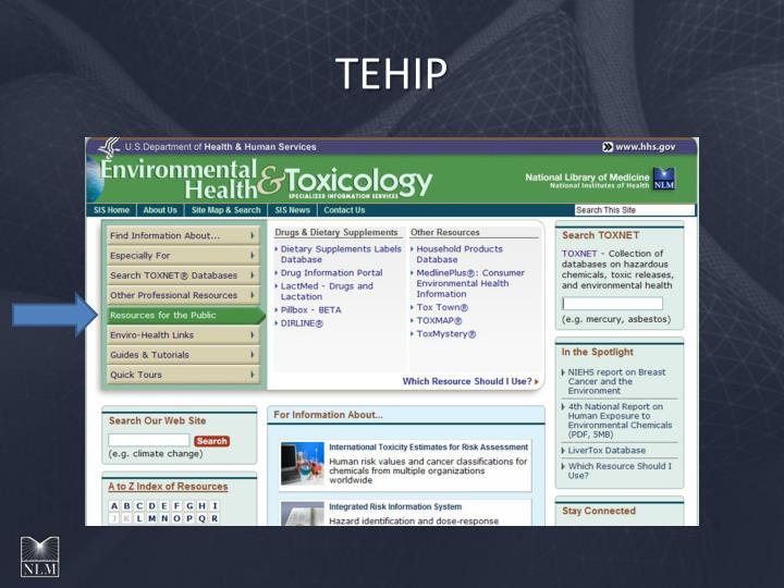 TEHIP