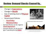 review demand shocks caused by1