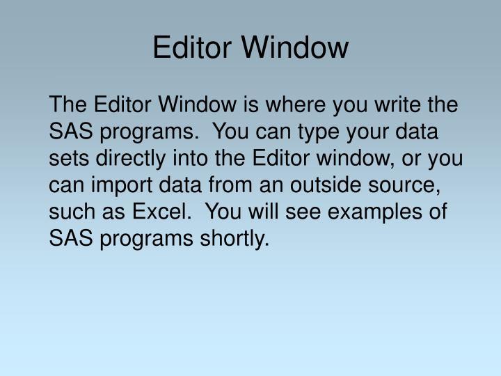Editor Window