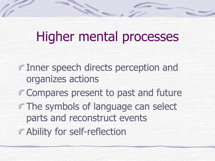 Higher mental processes