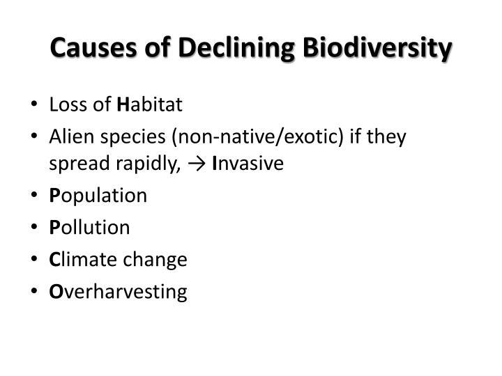 Causes of Declining Biodiversity