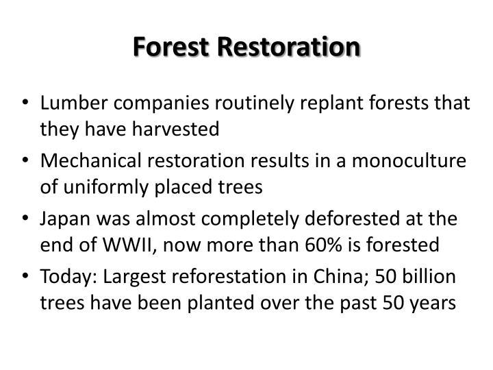 Forest Restoration