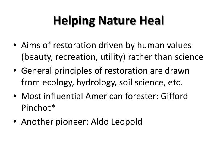 Helping Nature Heal