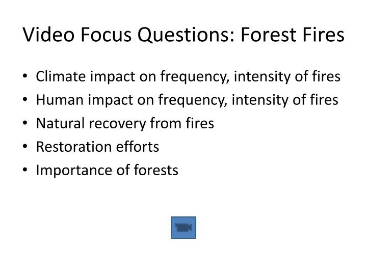Video Focus Questions: Forest Fires