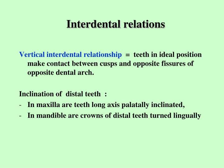Interdental relations1