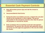 essential cash payment controls1