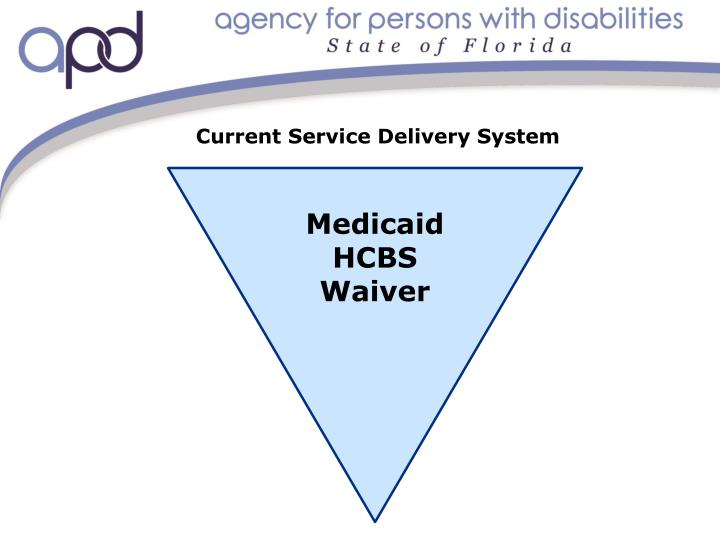 Current Service Delivery System
