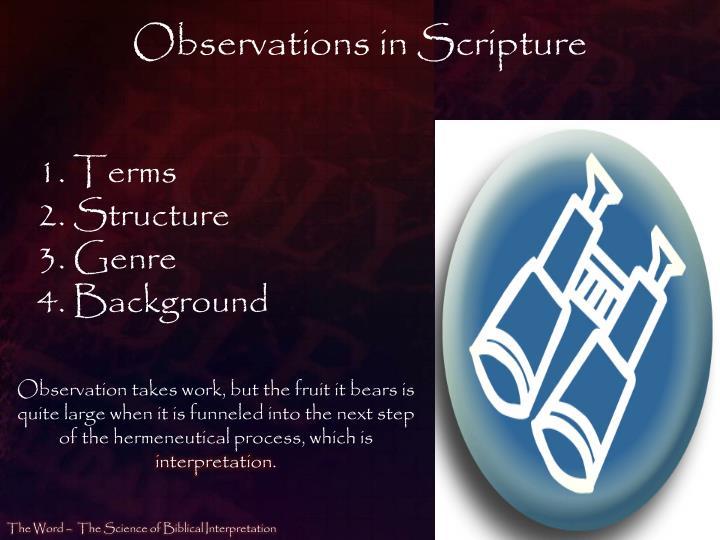 Observations in Scripture