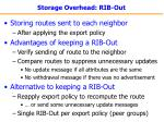 storage overhead rib out