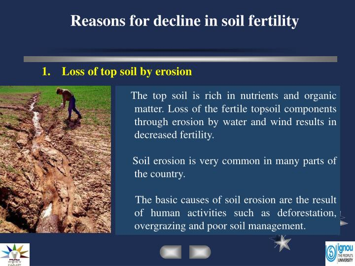 Ppt reasons for decline in soil fertility powerpoint for Rich soil definition