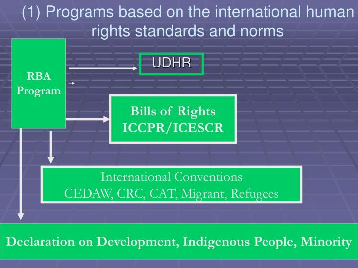 (1) Programs based on the international human rights standards and norms
