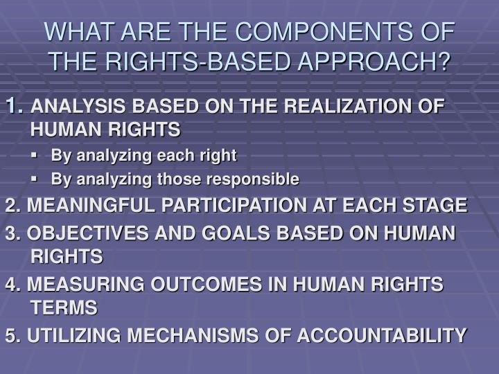 WHAT ARE THE COMPONENTS OF THE RIGHTS-BASED APPROACH?