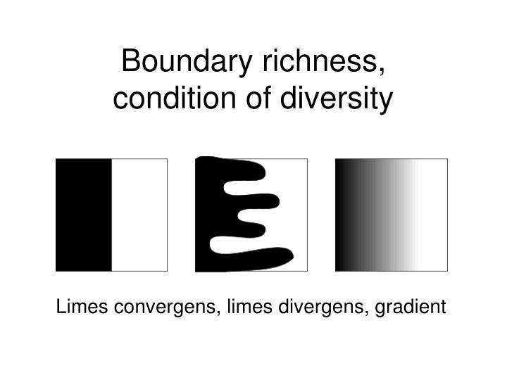 Boundary richness,