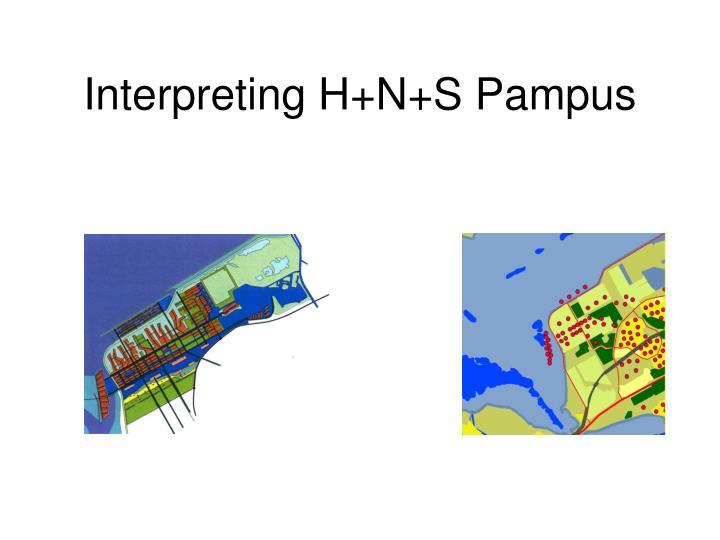 Interpreting H+N+S Pampus