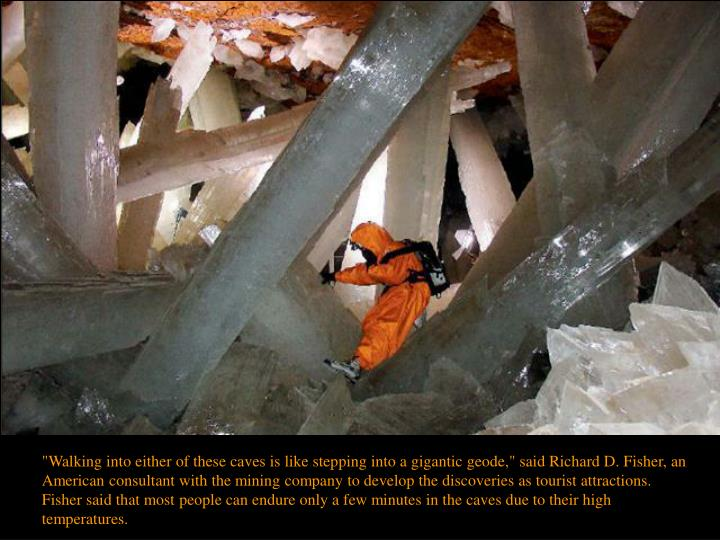 """""""Walking into either of these caves is like stepping into a gigantic geode,"""" said Richard D. Fisher, an American consultant with the mining company to develop the discoveries as tourist attractions."""