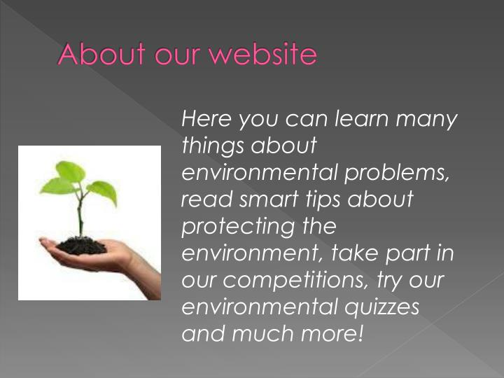 About our website