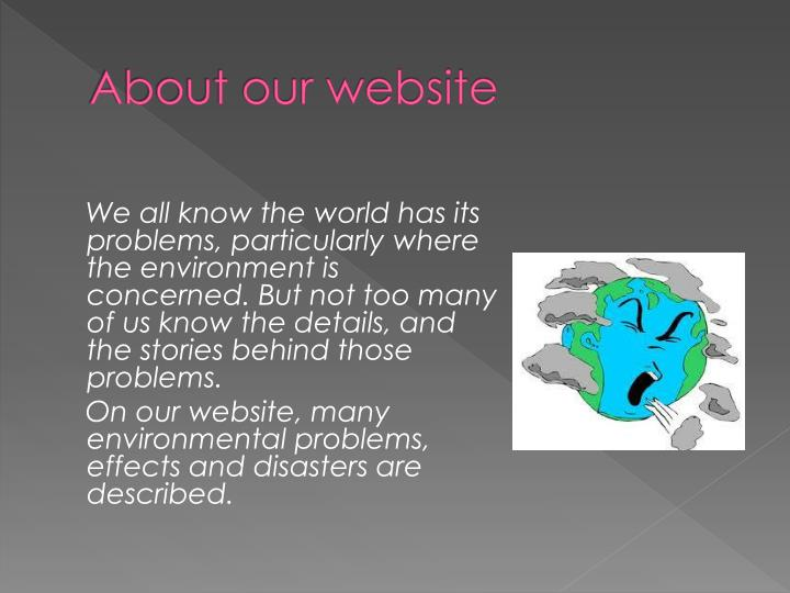 About our website1
