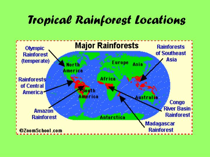 Tropical Rainforest Locations