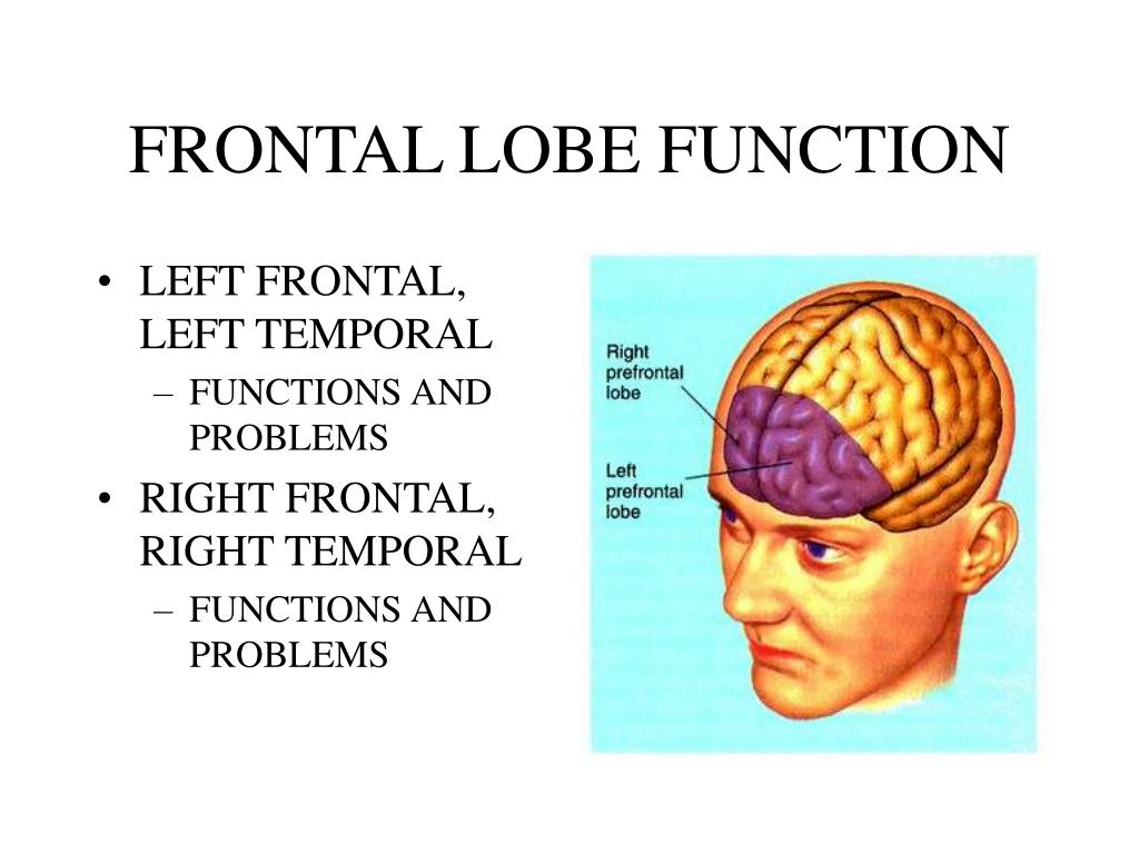 PPT - FRONTAL LOBE PATHOLOGY, PAROXYSMAL DISORDERS, and ...