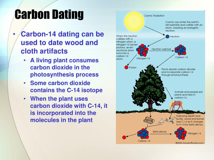 carbon-14 dating assumes that the carbon dioxide