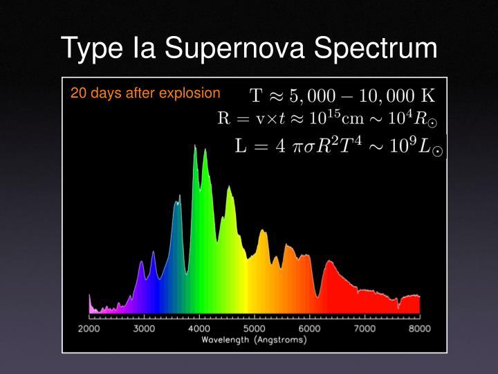 Type Ia Supernova Spectrum