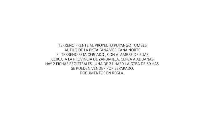 TERRENO FRENTE AL PROYECTO PUYANGO TUMBES