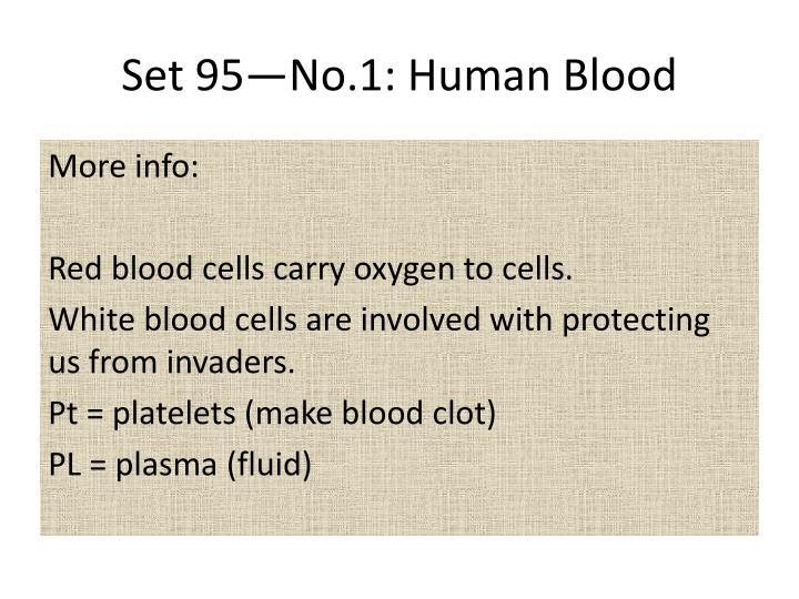 Set 95—No.1: Human Blood