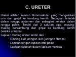 c ureter